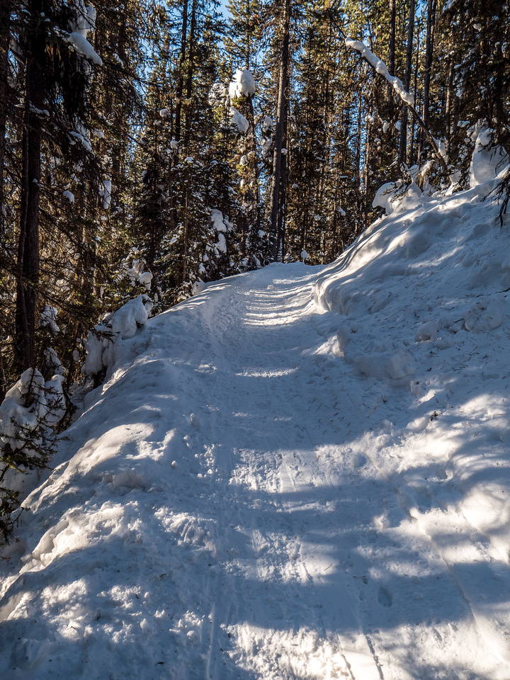 The luge track to Taylor Lake isn't as much fun as it looks for descent. But it does make for a quick and easy ascent.