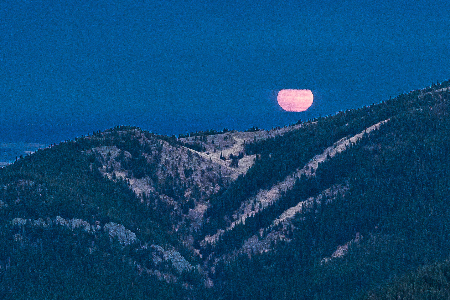 On the drive home, just as we dropped down from Windy Gap, the super moon rose over the foothills.