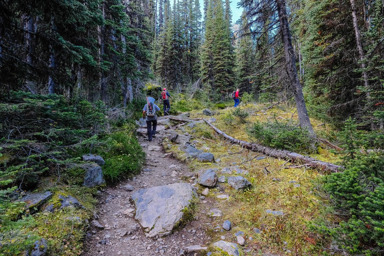 A nice hike towards McArthur Pass.