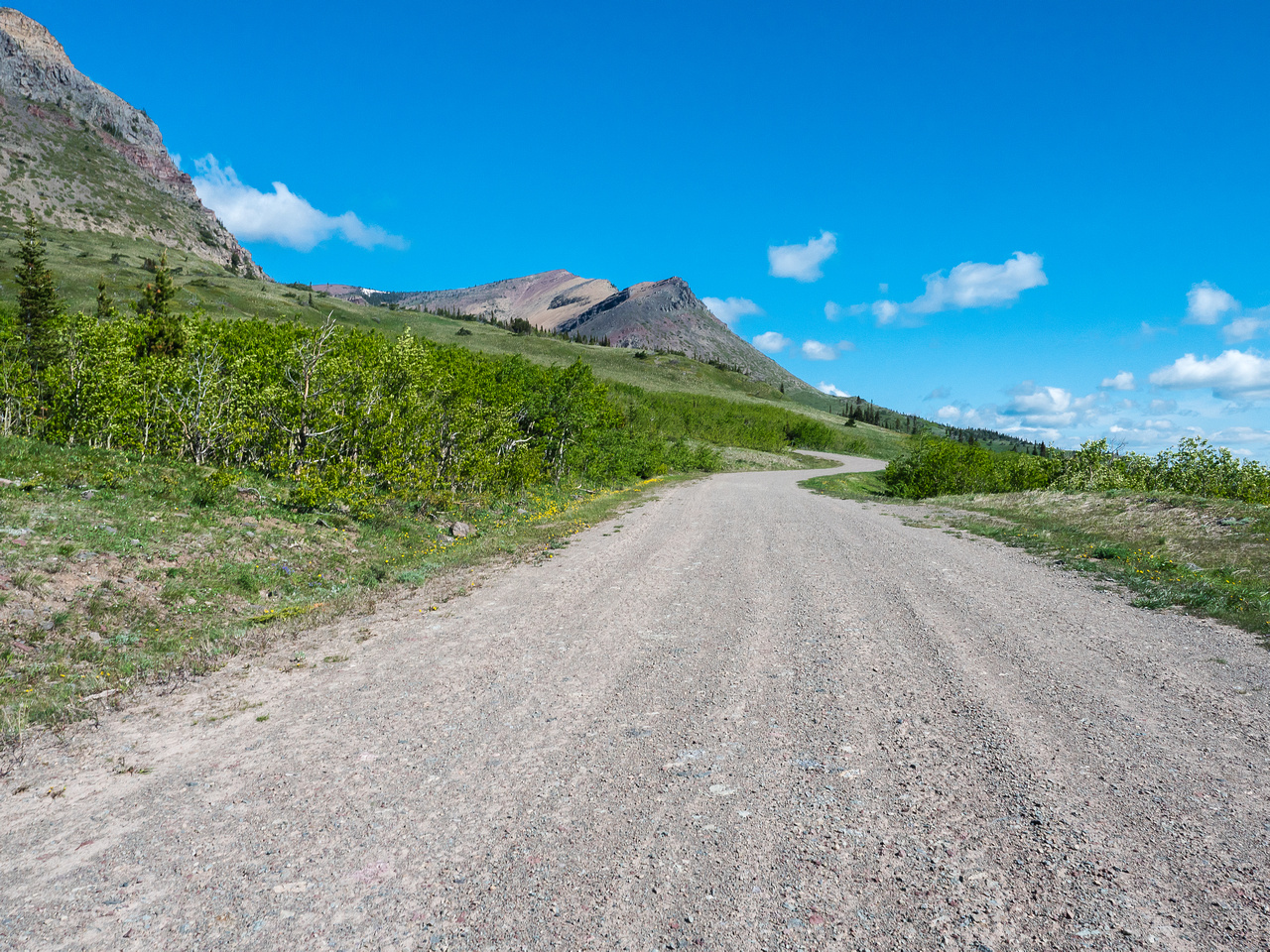 We followed this road until it curved sharply left where we found an excellent trail leading to Prairie Bluff - visible at center here.