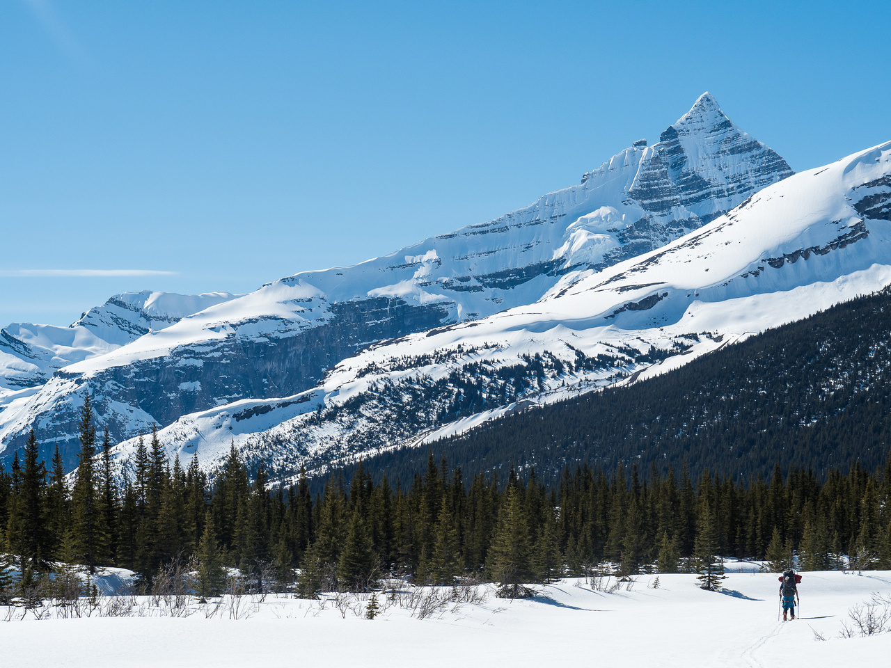 Ben skis down the drainage towards Berg Lake with Whitehorn rising dramatically above him.
