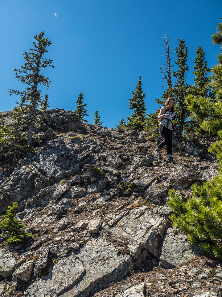 Some rocky slopes on descent - the loose stuff can usually be avoided on climber's right.