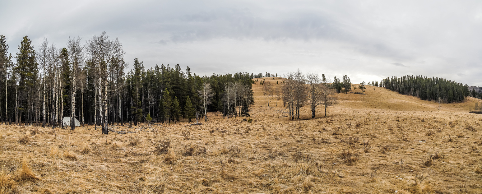 The outfitter's tent at left and Wolf Creek Hill above on the right. Channel Ridge out of sight at right.