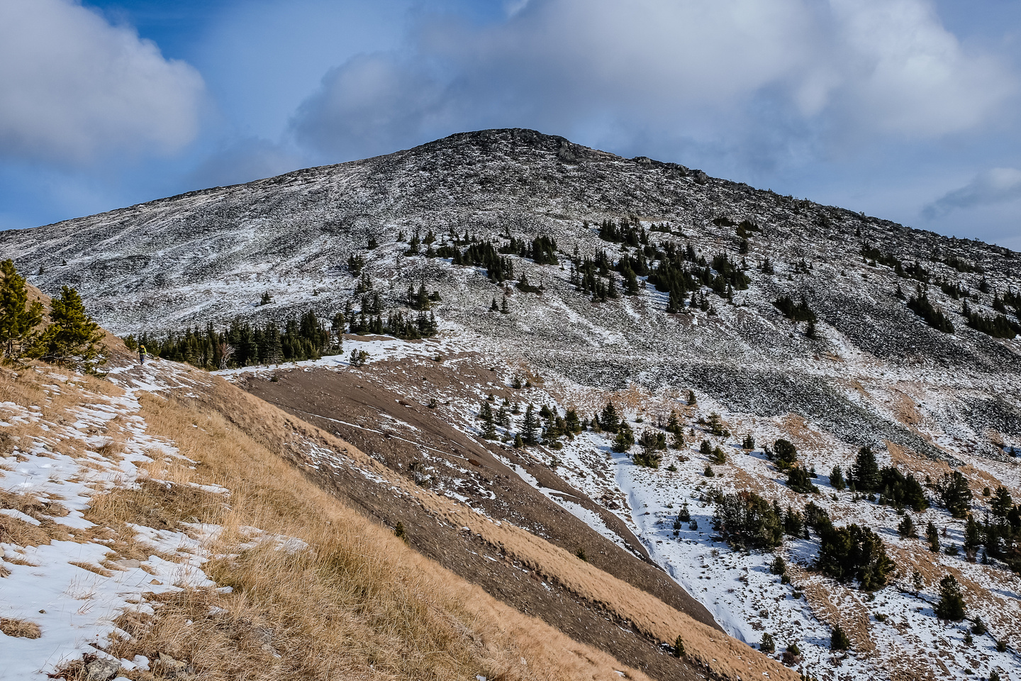 We followed a trail towards Cabin Ridge on the south side of the abutment ridge.