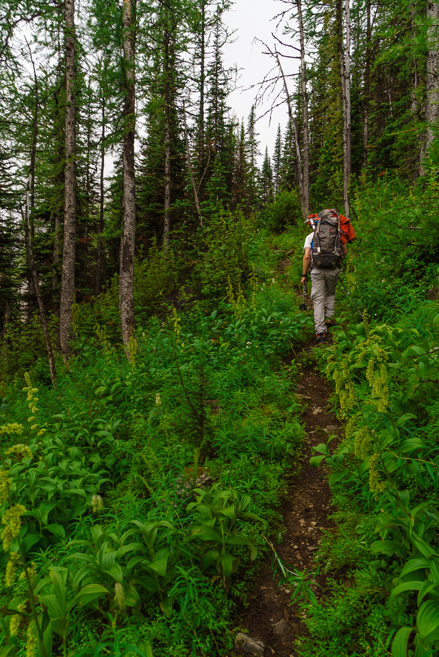 On the excellent approach trail - too bad the vegetation was soaking wet from the storm that passed us by!