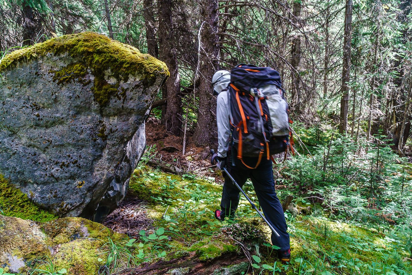 Make no mistake about it - there is bushwhacking involved in the Totem Creek valley! The faint trail doesn't last long.