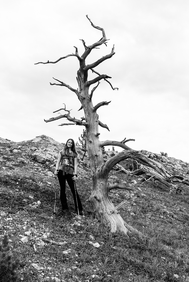 KC and a dead tree.