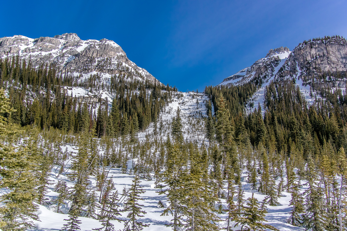 Looking up the avy slope that we used to gain the hanging valley.