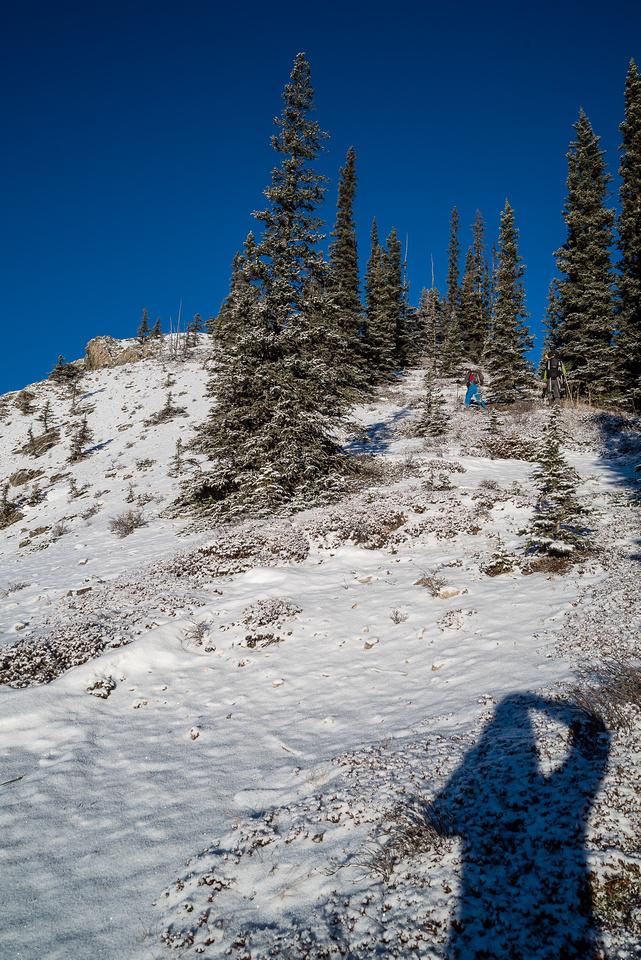 Following the ridge to tree line.