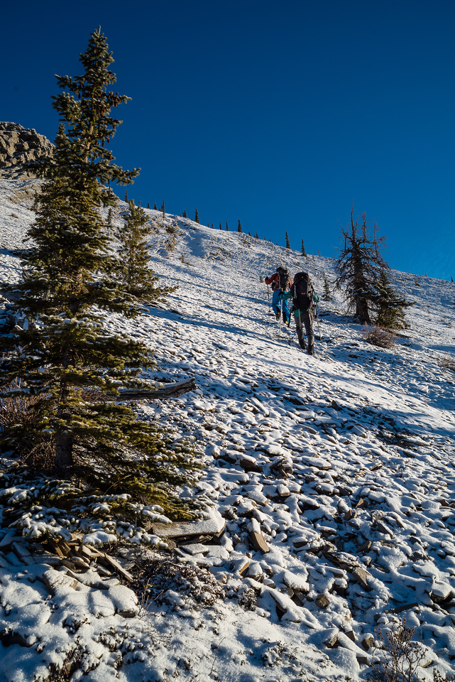 Hiking up frozen scree / grass.