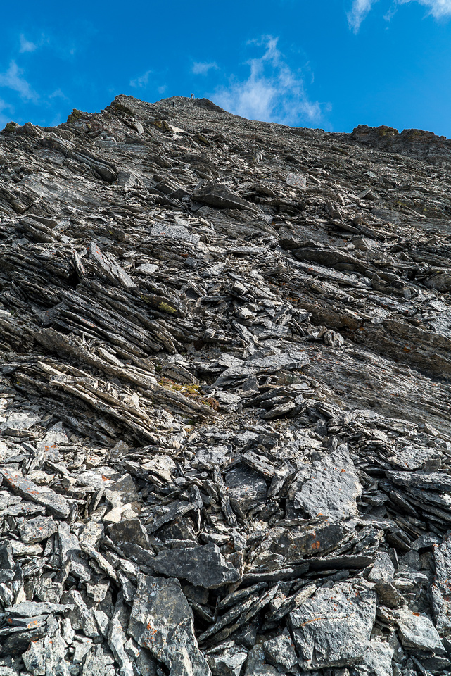 Grunting up yet another pile of Rockies scree. What the hell is wrong with me?!