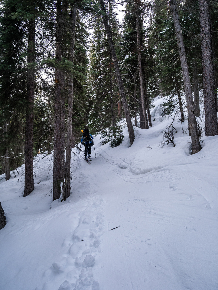 The trail gains height to Lake Annette.