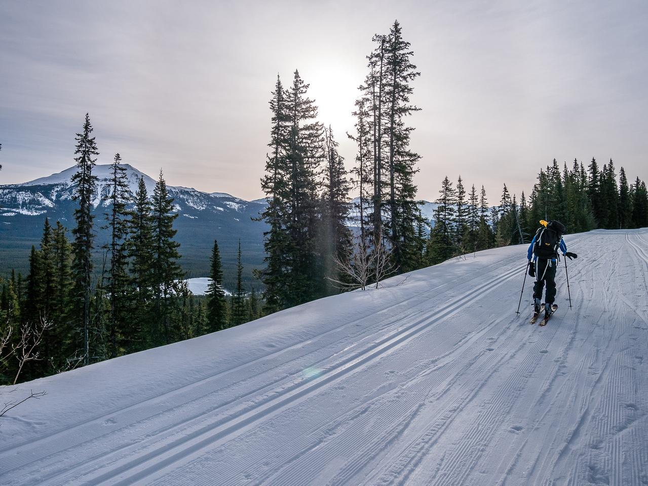 Steven skis up the Moraine Lake road.
