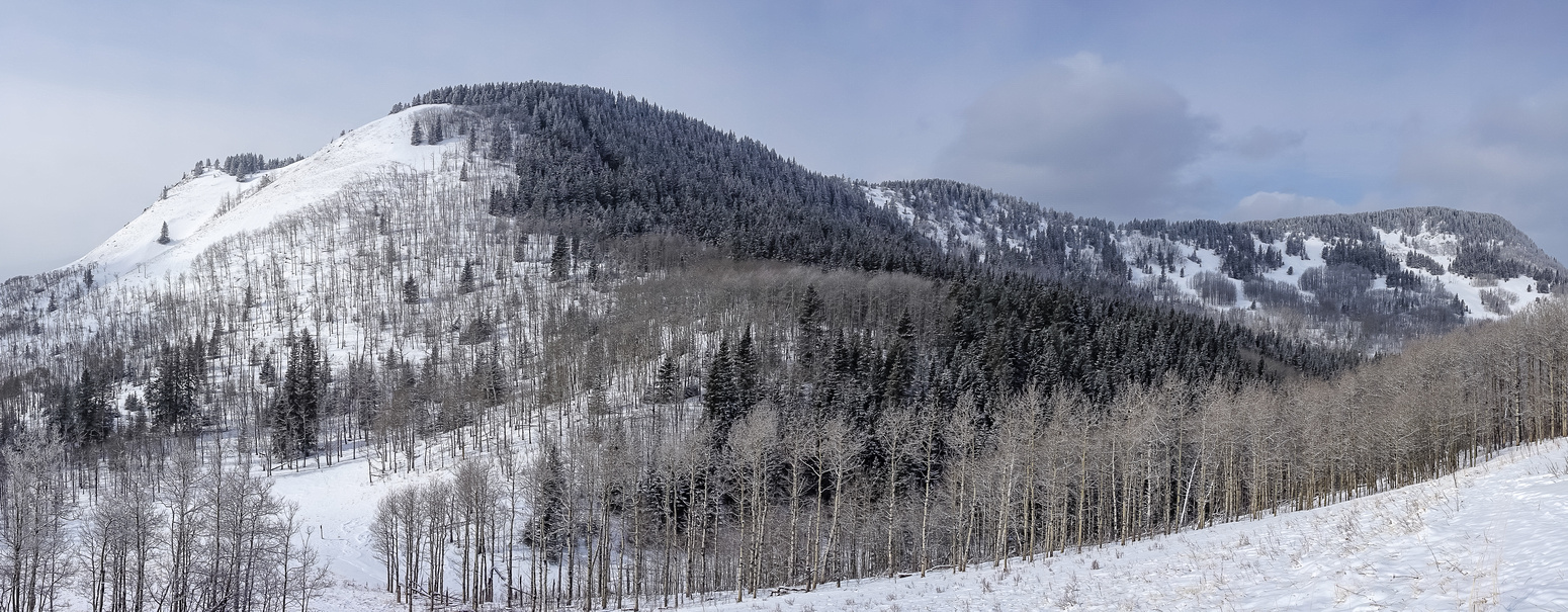 The entire Windy Point Ridge (summit on left) from near the pass.