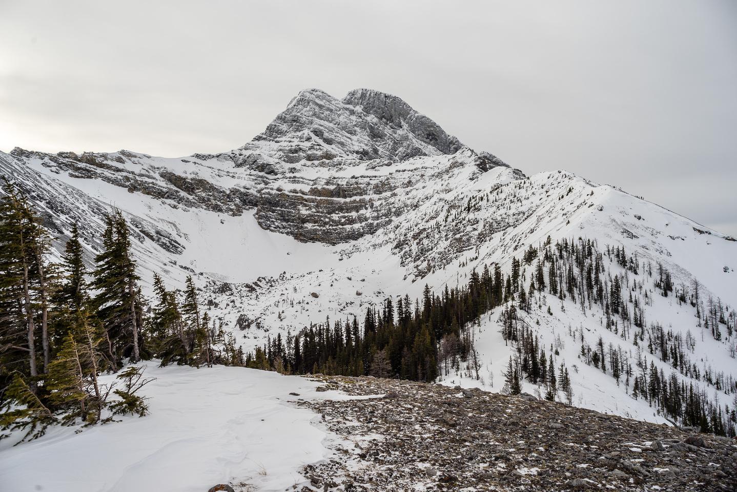 Mount Buller.
