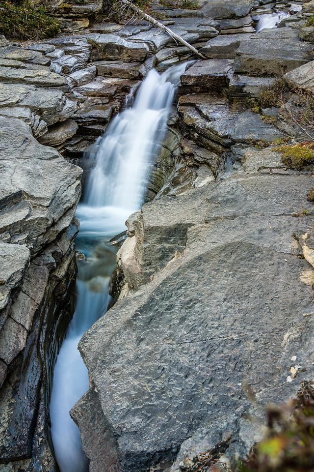 Toboggan Creek.