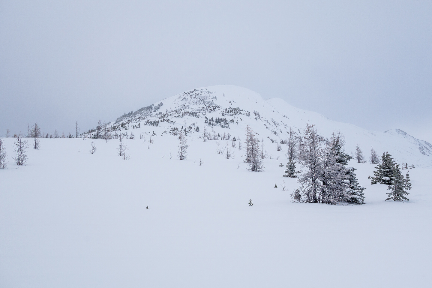 It's not looking like we're going to be able to ski to the summit or have any views again.