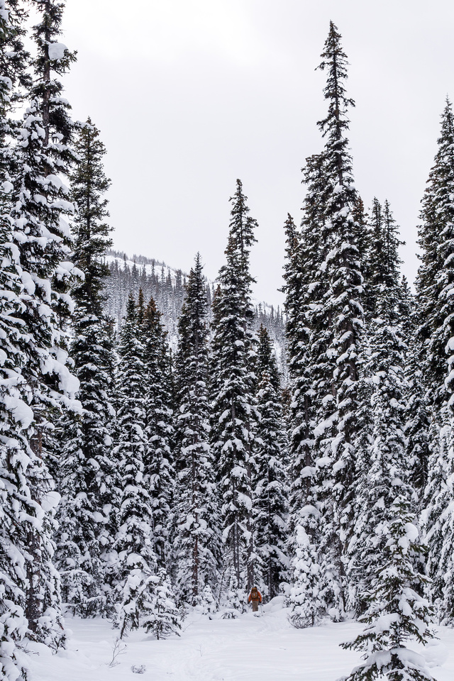 Don't let the fresh pow fool you though - it's very unconsolidated underneath.