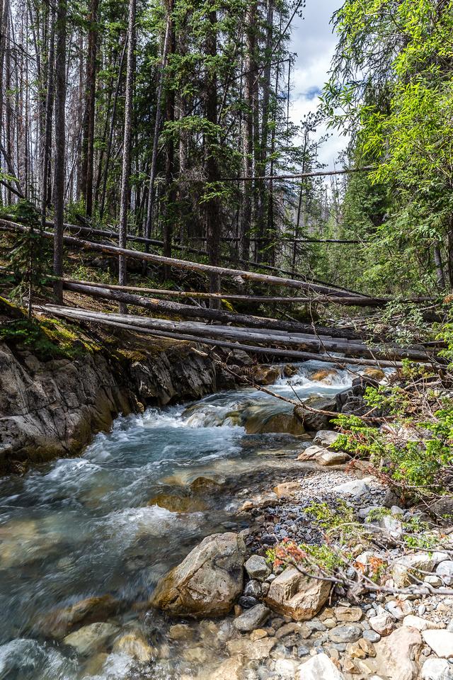 Thompson Creek.