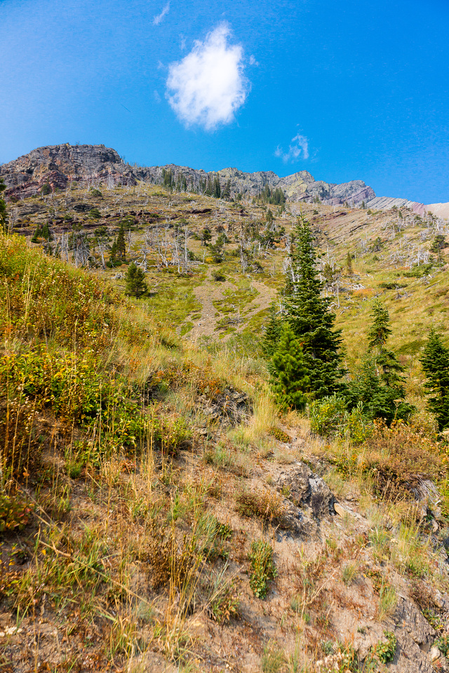 Looking back up the south slopes - my escape drainage at left.