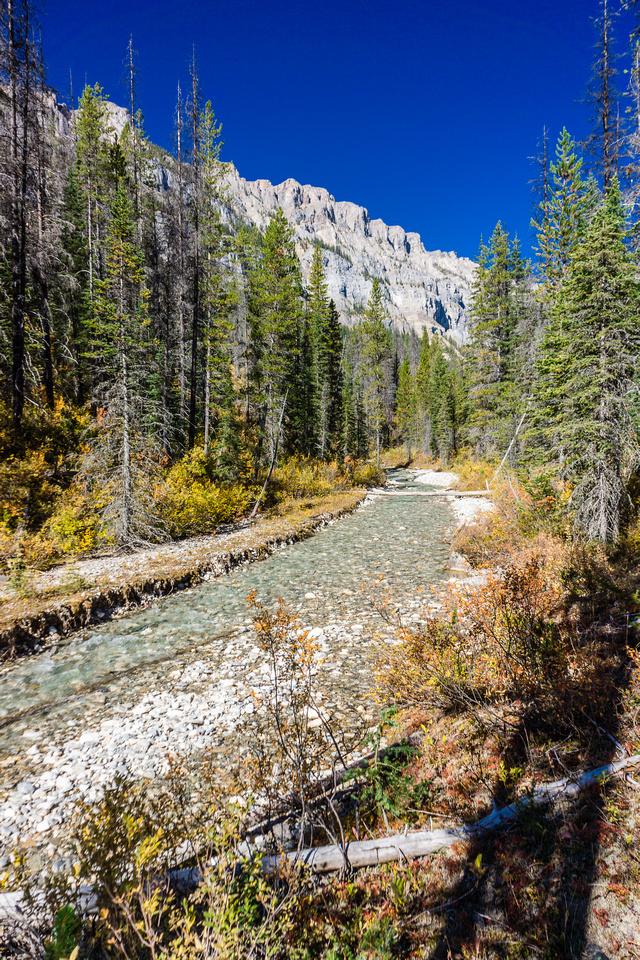 The Assiniboine Creek trail.