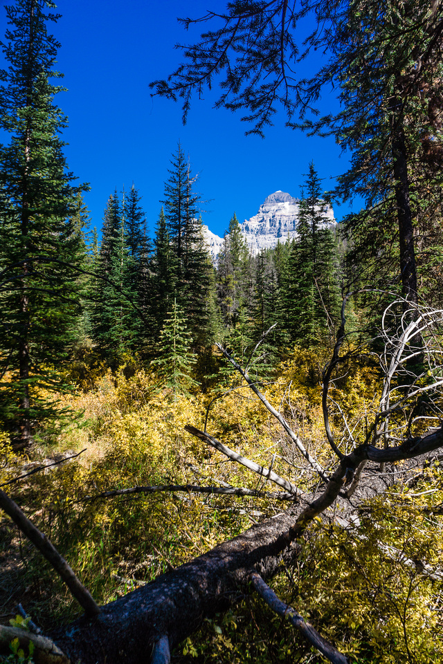"""The mighty """"A"""" reveals her SW side as we round the trail towards Assiniboine Lake. Assiniboine on the left and Lunette on the right."""