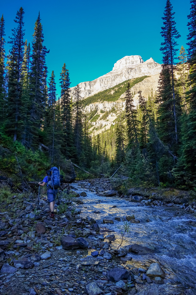 Sometimes we got little breaks were we could walk alongside the creek.