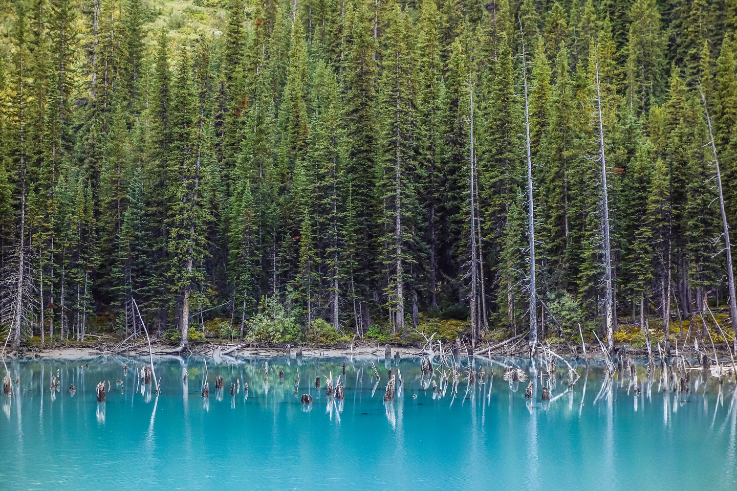 Interesting colors and terrain at the tiny lake.