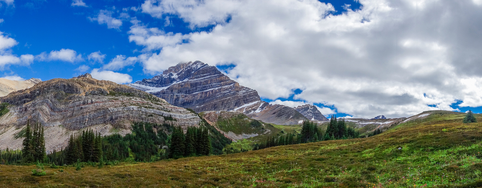 The alpine meadows above the 5th Geraldine Lake provide great views of the north ridge and east face of Fryatt.
