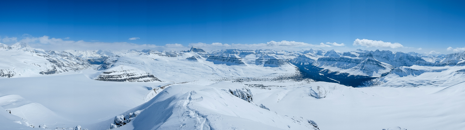 The Saskatchewan Glacier at left and Alexandra River Valley at right.