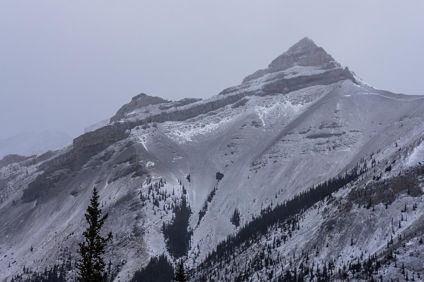 The false summit of the East Peak of Mount Burns.
