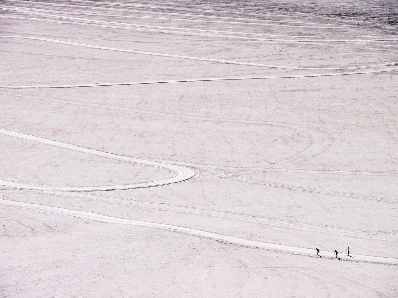 Skiers on a white canvas.