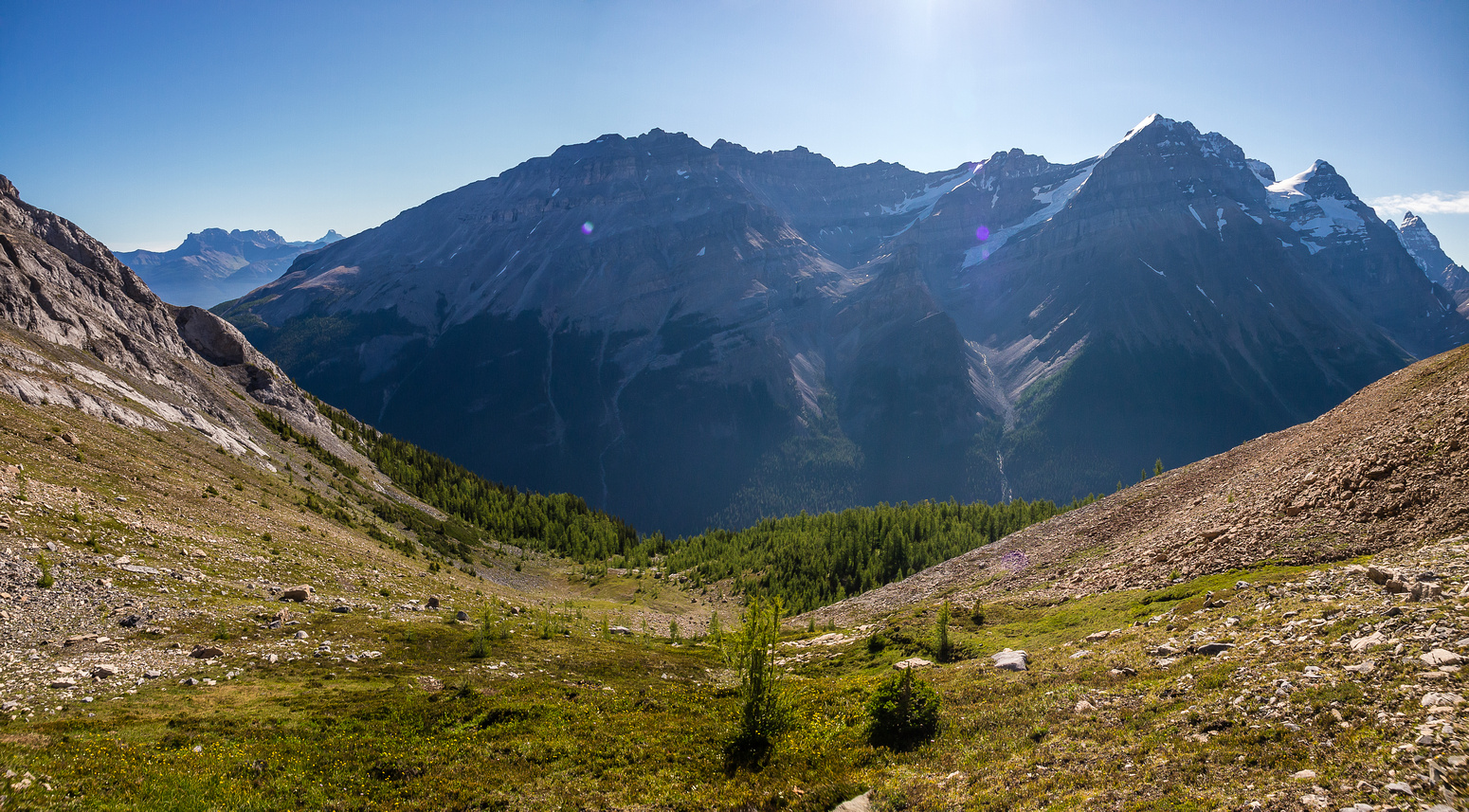 Descending through the upper larch forest.