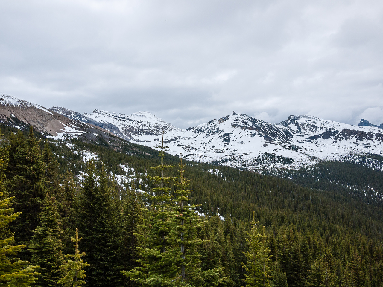 View to North Molar Pass.