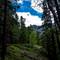Mount Baldy - West Ridge