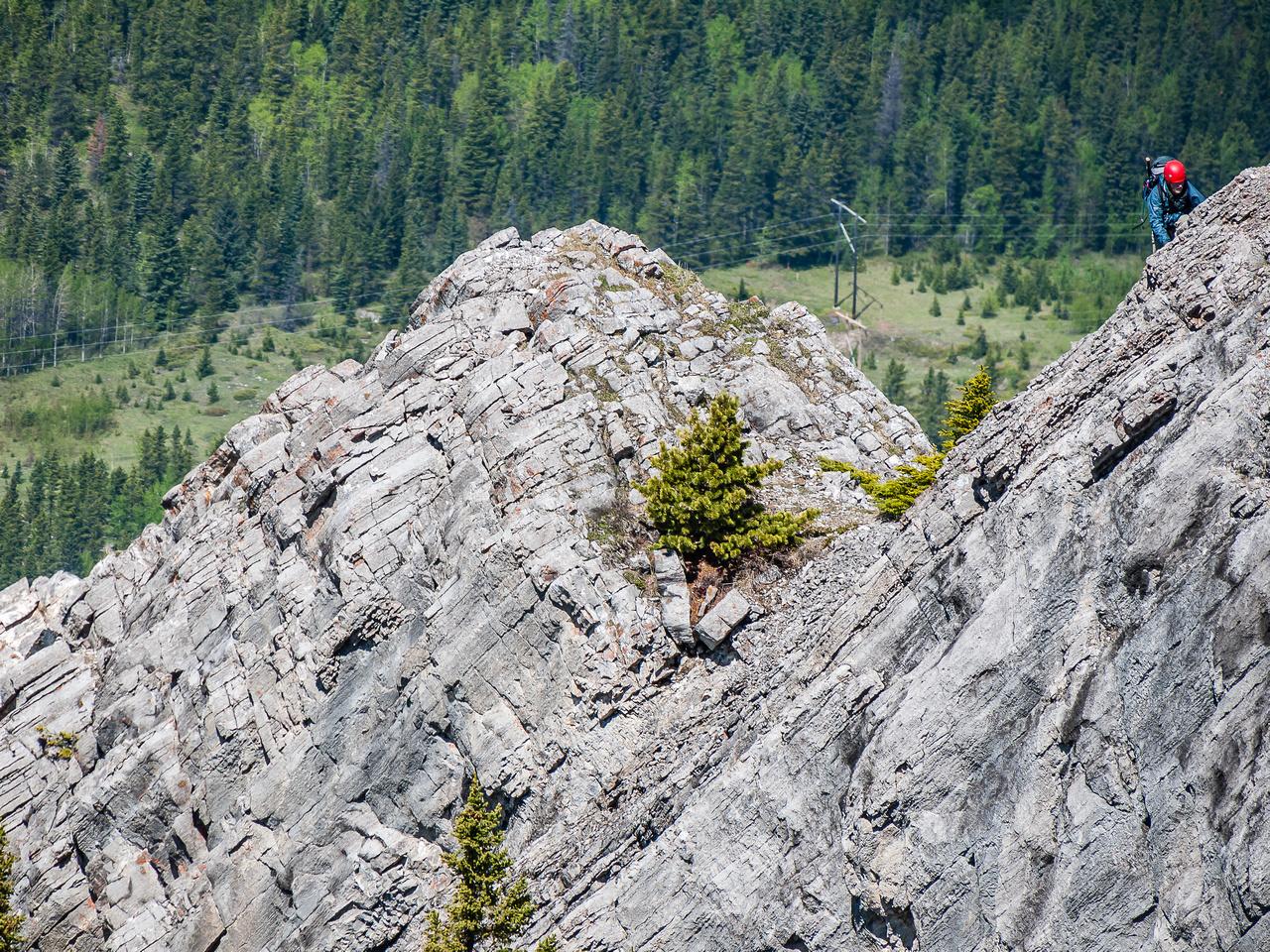 On the west ridge of Baldy.