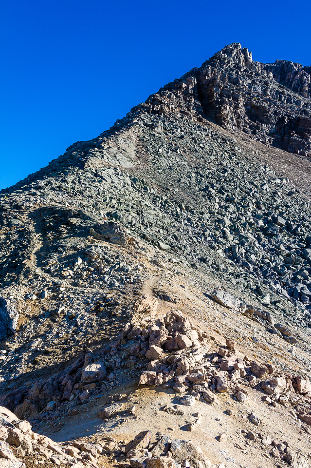 The ridge route to the summit of Schaffer - there's a great trail all the way up!