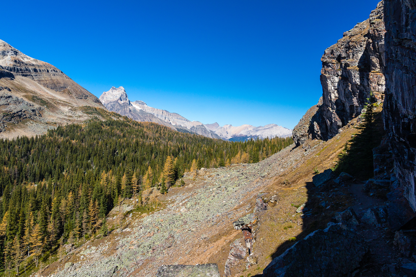 Looking along a neat section of trail that bypassed cliffs on the right, towards McArthur Pass and Cathedral Mountain.