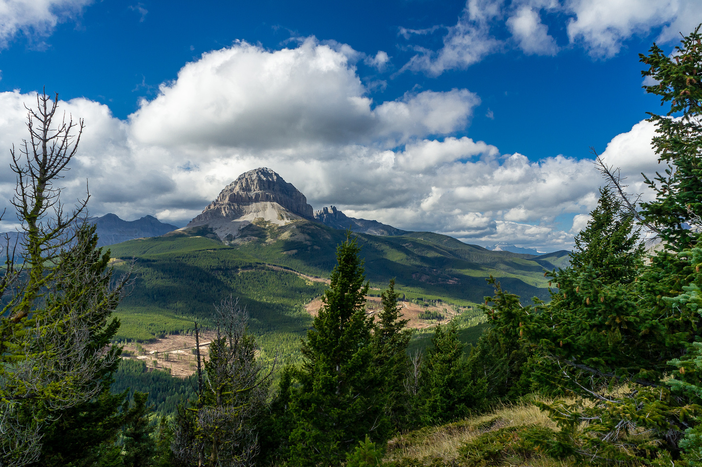 Another great view of Crowsnest Mountain.