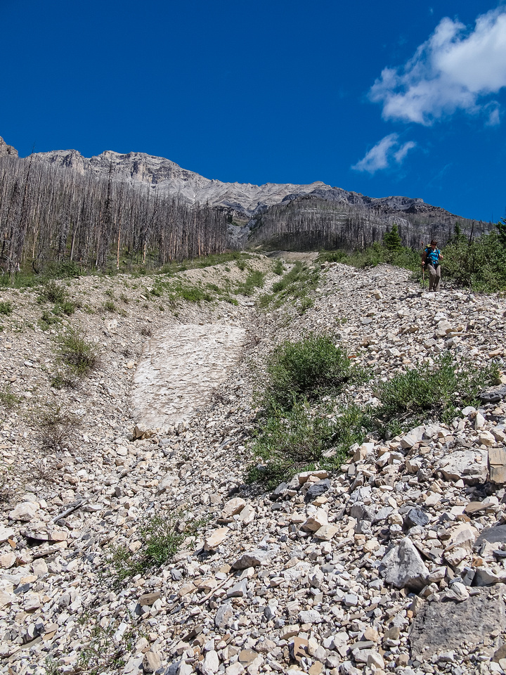 Finally we escaped the cliff bands and descended loose scree avalanche gullies to the creek.
