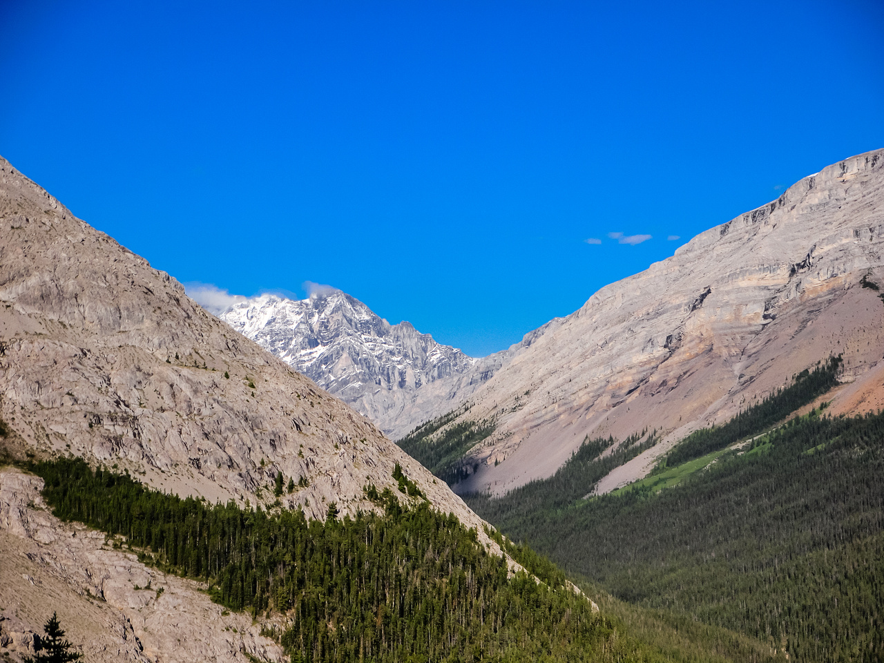 Our views opened pretty quickly to the west, towards Tombstone Mountain.