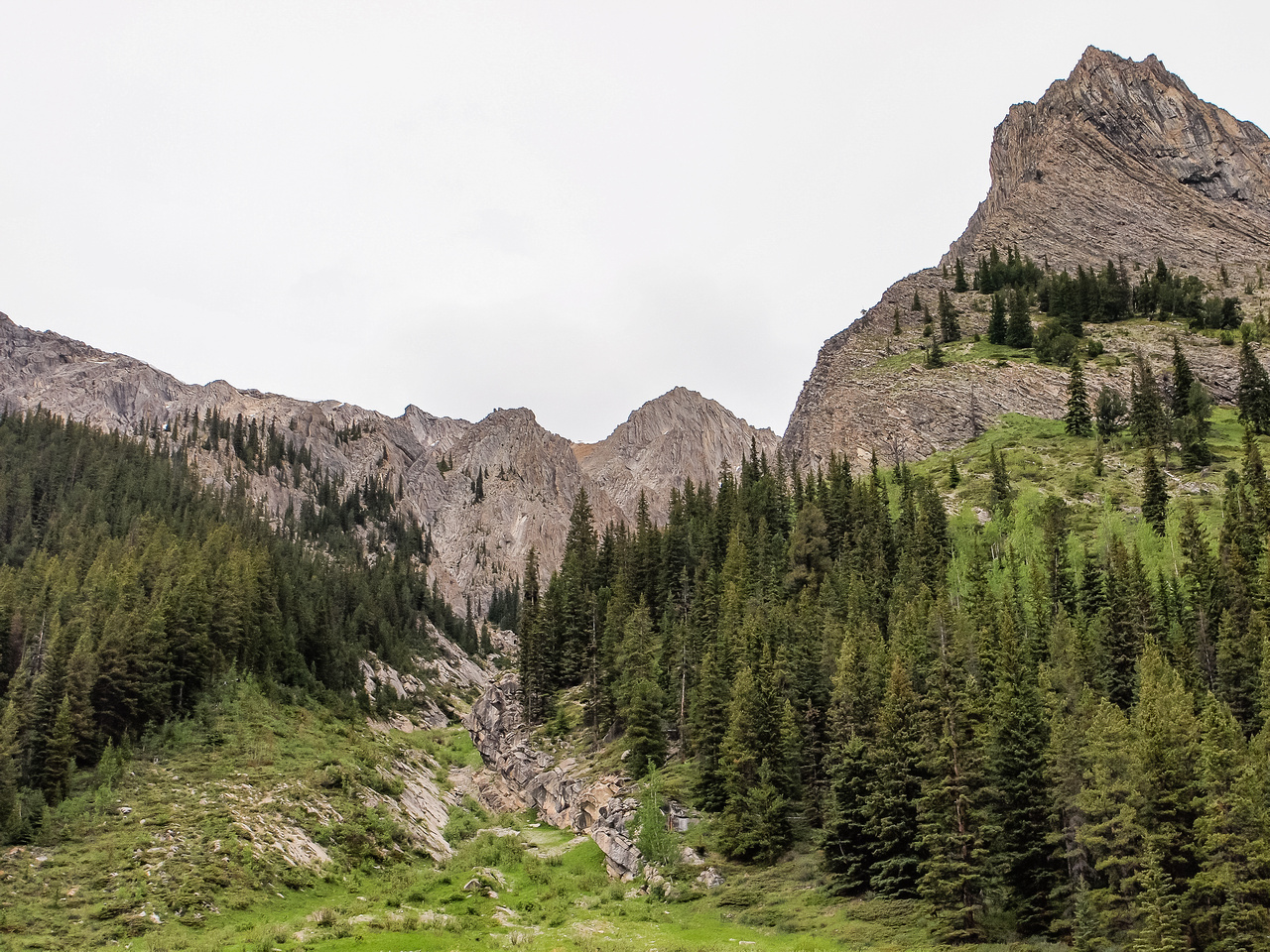 One more look back at our escape gully before we rejoined our ascent track and bikes.