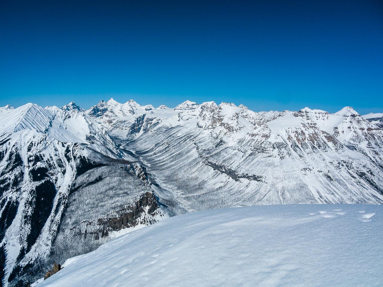 Views up Tokumm Creek to the Fay Glacier include Hungabee, Deltaform, Allan, Perren and more.