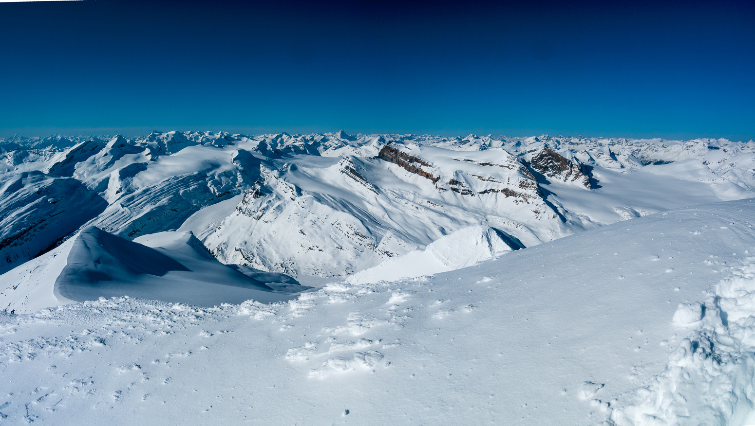 Incredible views over the entire Wapta Icefield.