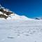 Egress Waputik Glacier via Balfour Creek & Hector Lake