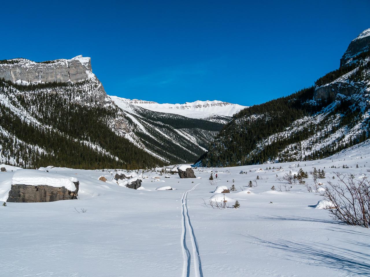 Skiing down Balfour Creek to Hector Lake.