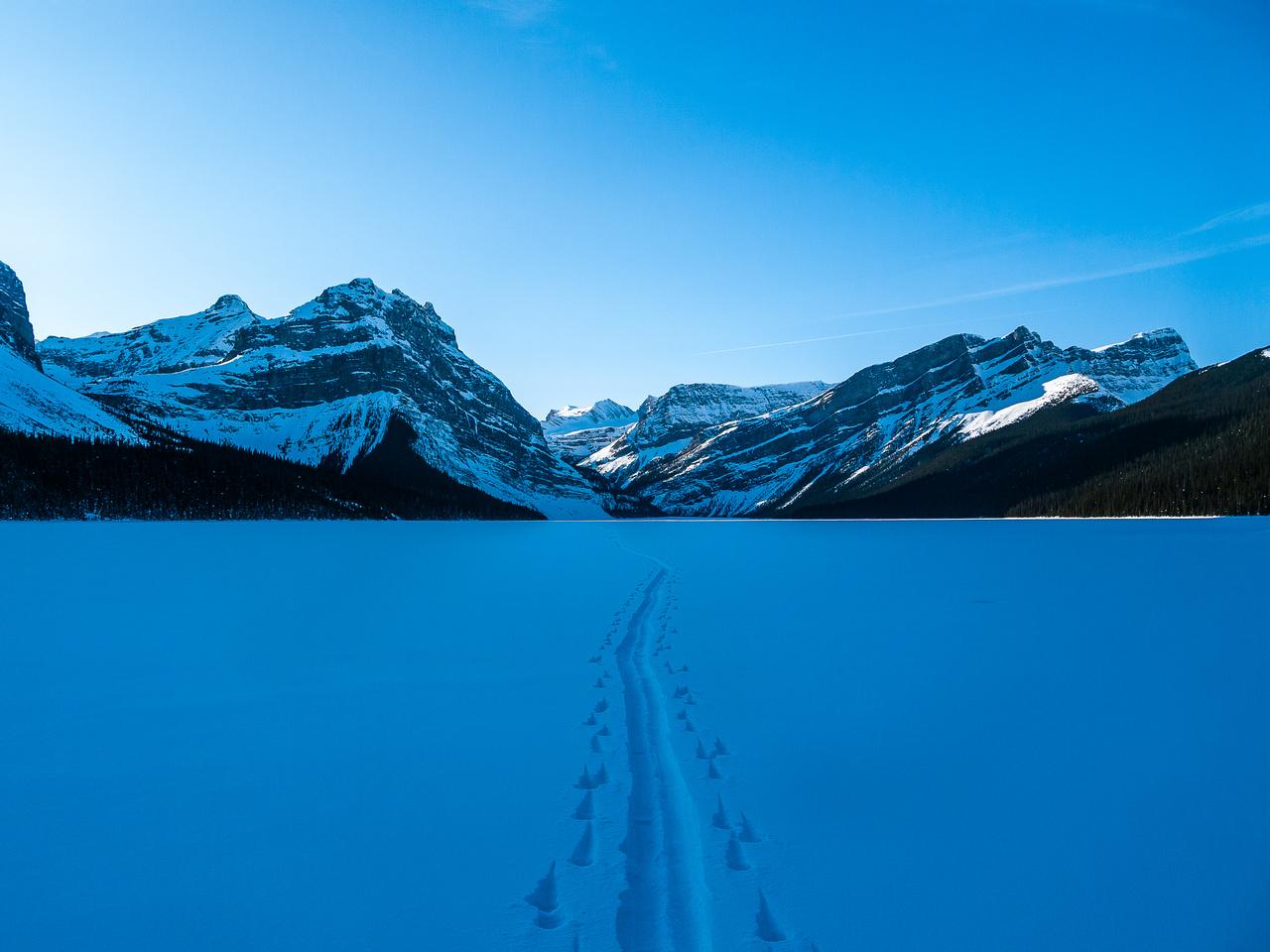 Skiing across Hector Lake - looking back.