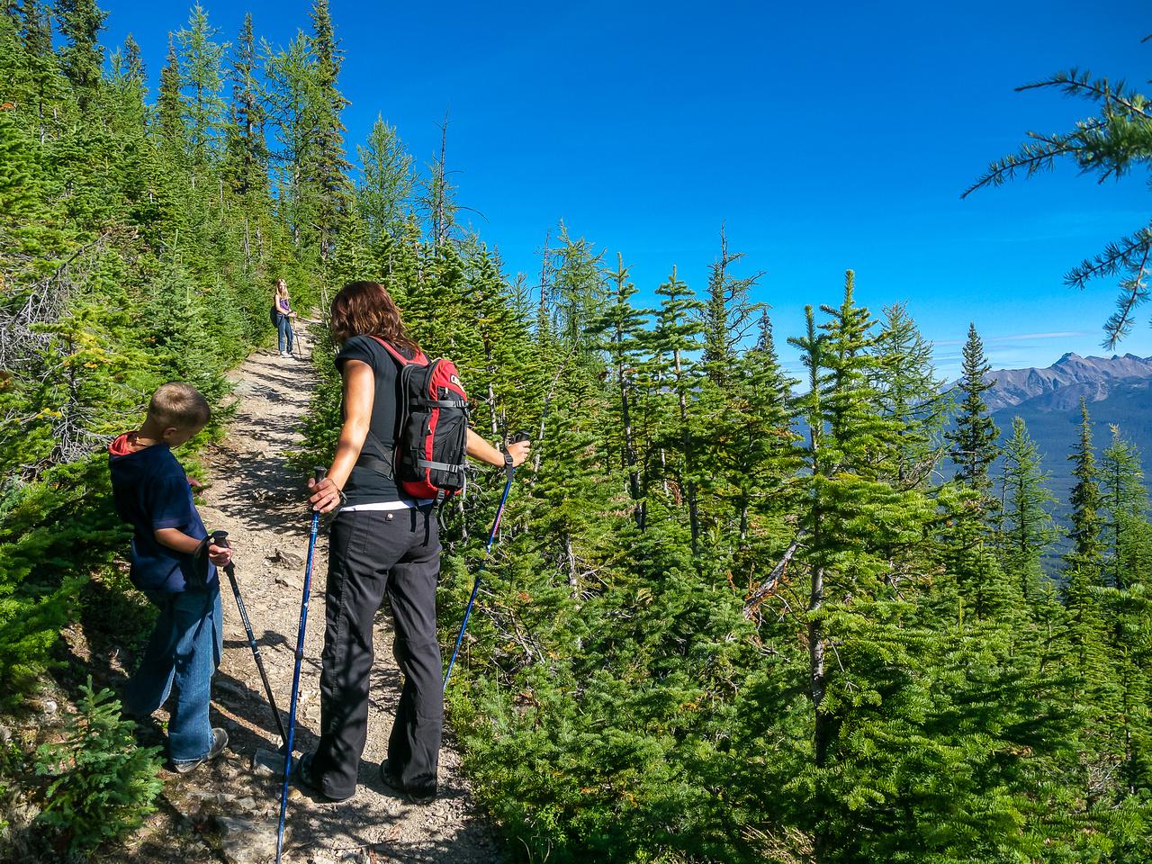 Ascending to Saddleback Pass on a good trail.