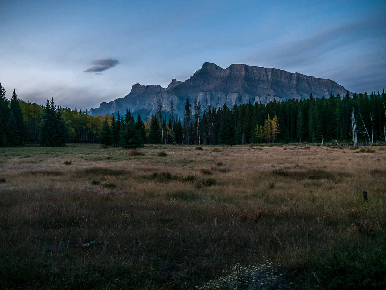 Looking back towards Cascade Mountain from the lower open meadows.