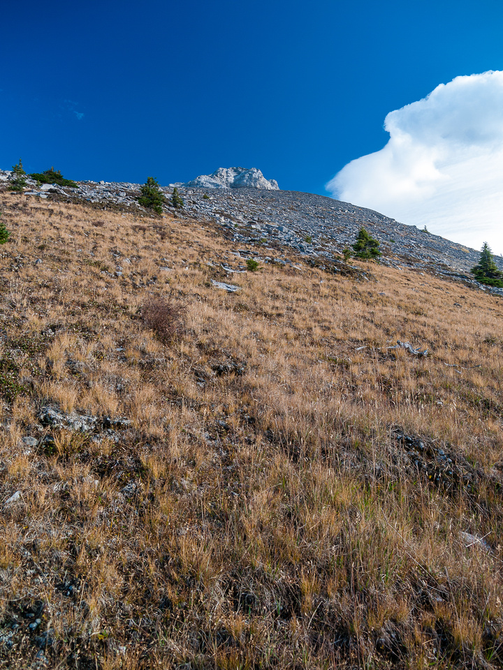 The grass becomes firm scree higher up. You can just spot the summit block about 600 vertical meters above me.
